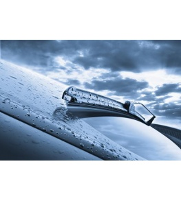 Buy any 2 wipers and get FREE screen wash
